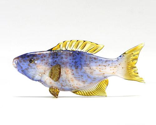 ビットリオ・コスタンティーニ 熱帯魚 ホワイト ブルー イエロー A