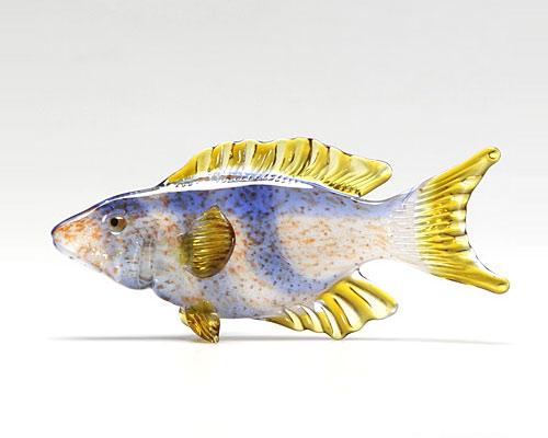 ビットリオ・コスタンティーニ 熱帯魚 ホワイト ブルー イエロー B